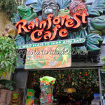 Rainforest Cafe – San Francisco