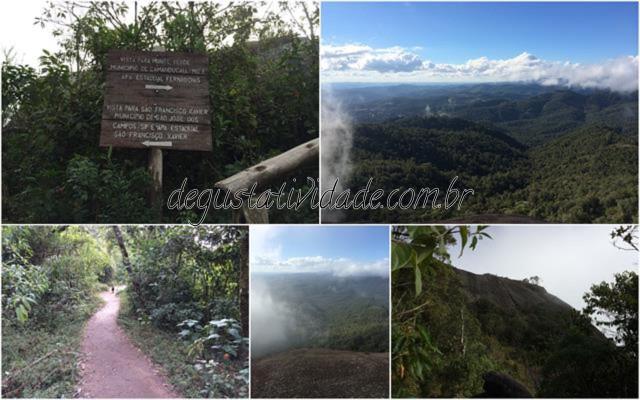 Monte Verde23_640x400