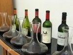Chilean Premium Wines – Alex Ordenes – Wine Chef