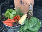 Horta à Porta – Delivery de Orgânicos – BH