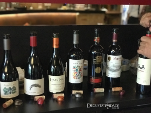 Chilean Premium Wines – Alex Ordenes – Wine Chef