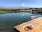 Siete Fuegos – The Vines  – Vale de Uco – Mendoza