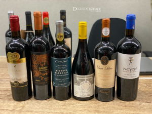 Master Class Wines of Chile 2021